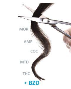 Análisis de cabello Evidens Polytox
